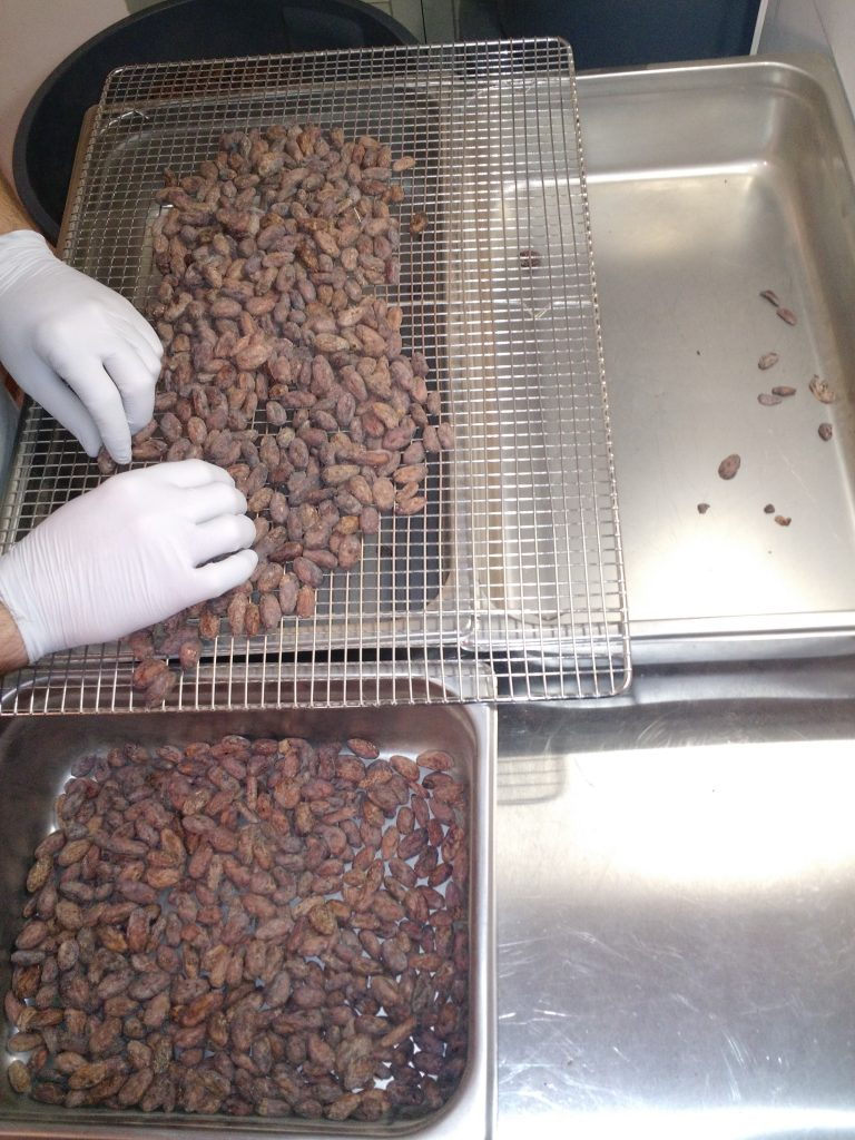 Sorting cacao